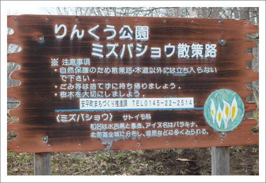 blog13-0016169waku