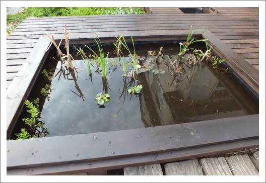 池が完成!1