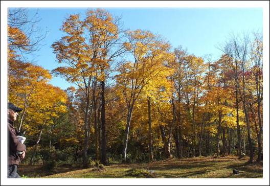 甘露の森3