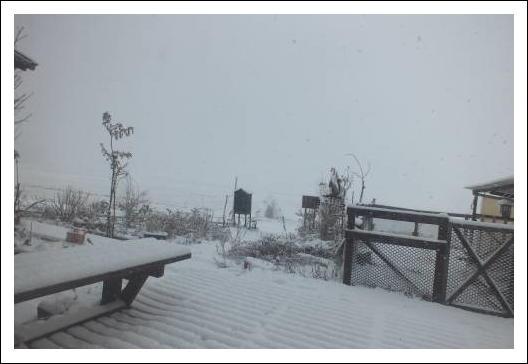 初雪12/07-1